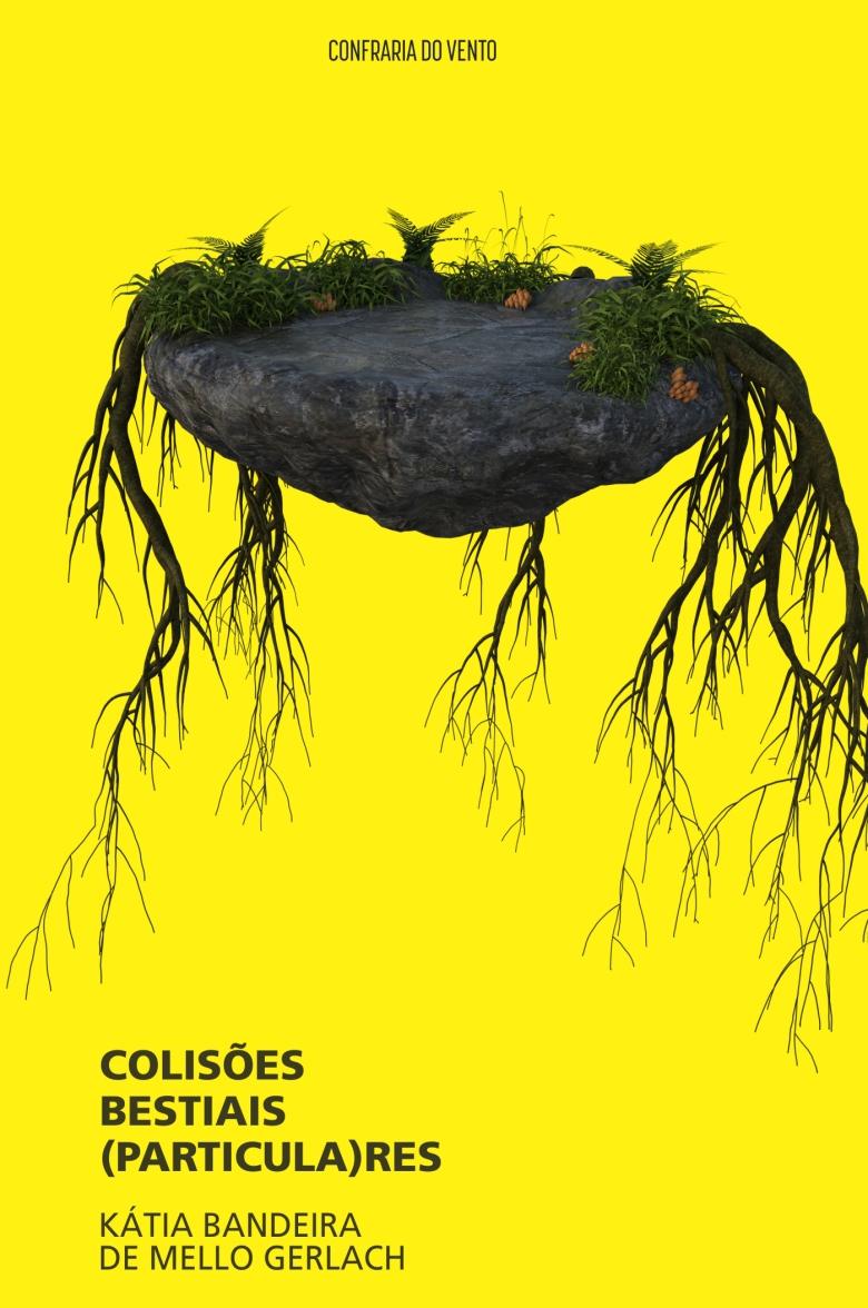 image_02d2d82c-42f5-4a1f-a06e-a2473088c67a.colisões - capa - final